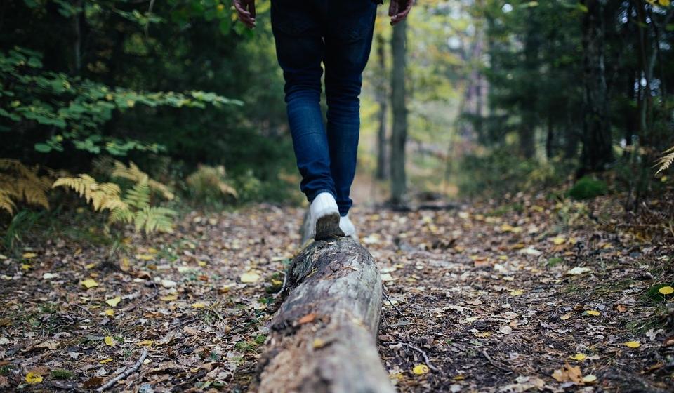 best walks hikes northland